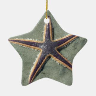 Starfish Purple sea star on beach Ornament