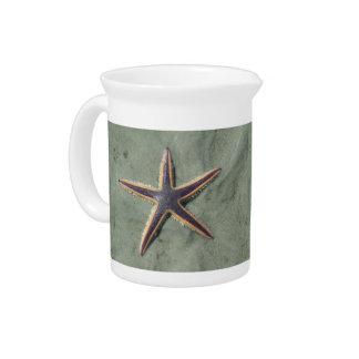 Starfish Purple sea star on beach Pitcher