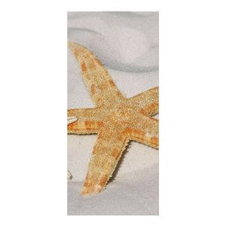 Starfish Rack Card Template