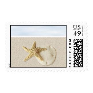 Starfish & Sand Dollar • Customize Me! Postage Stamp