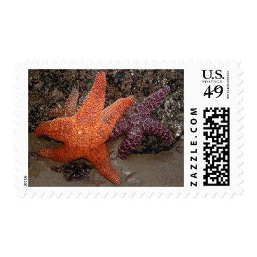 Beach Themed Starfish/Sea Stars, Cannon Beach OR, Photo 1 Postage