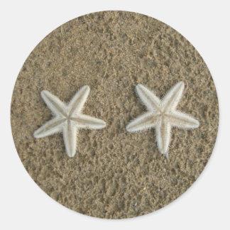 Starfish seal classic round sticker