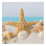 Starfish & Seashells Acrylic Home Decor