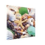 Starfish & Seashells Canvas Wrap Gallery Wrap Canvas