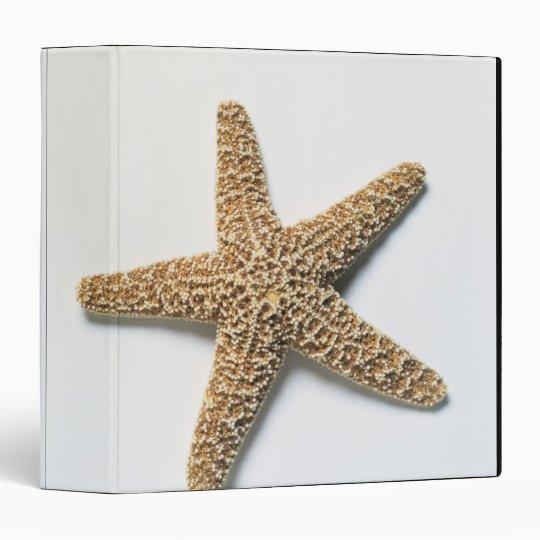 Starfish shell on white background 3 ring binder