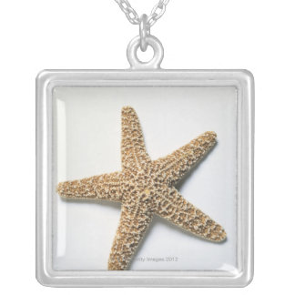 Starfish shell on white background silver plated necklace