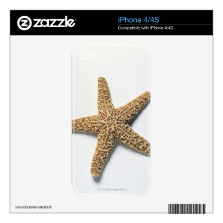 Starfish shell on white background skins for the iPhone 4