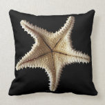 Starfish skeleton, close-up 2 throw pillows