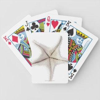 Starfish skeleton, close-up bicycle playing cards