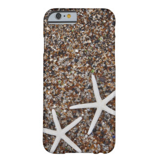 Starfish skeletons on Glass Beach iPhone 6 Case