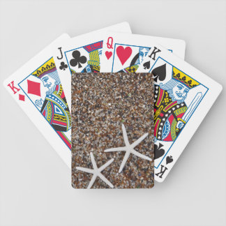 Starfish skeletons on Glass Beach Bicycle Card Deck