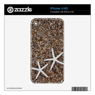 Starfish skeletons on Glass Beach Skin For iPhone 4S
