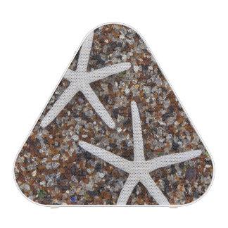 Starfish skeletons on Glass Beach Speaker