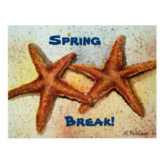 starfish, Spring, Break! Postcard