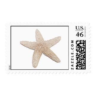 Starfish Stamp