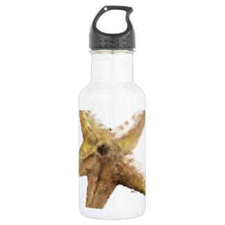 Starfish starfishes design paiting 18oz water bottle
