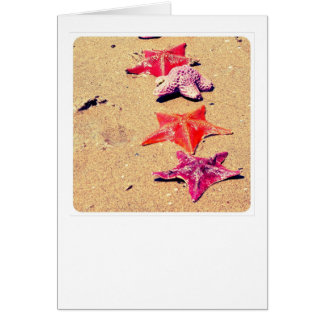 Starfish Stationery Note Card