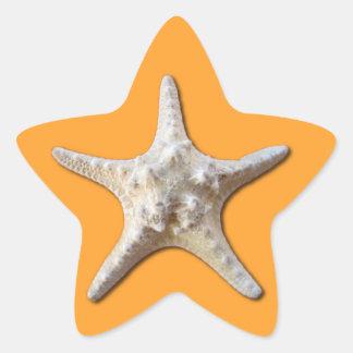 Starfish Sticker - Mango