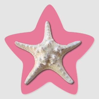 Starfish sticker pantone honeysuckle 2011