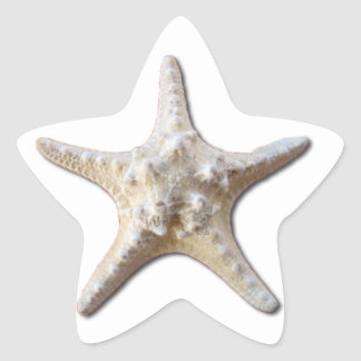 Starfish STicker - white