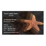 Starfish Template Business Card