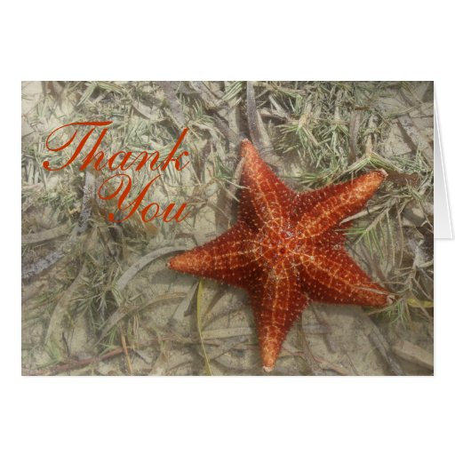 Starfish Thank You Greeting Card