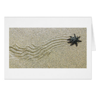 Starfish Trail Card