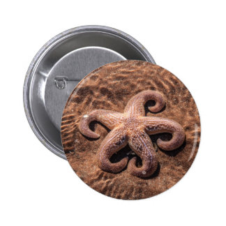 Starfish with Curly Legs Button Badge
