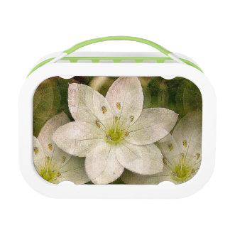 Starflower Digital Art Image Lunch Box