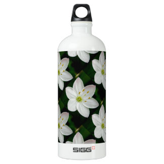 Starflower, Trientalis europaea Aluminum Water Bottle