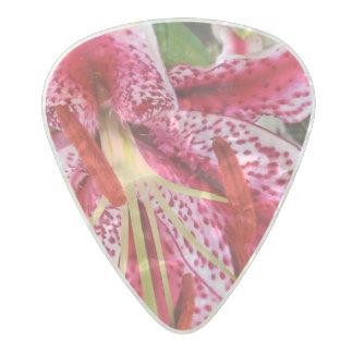Stargazer floral guitar instrument pick