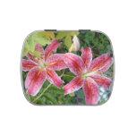 Stargazer Lilies Candy Tin