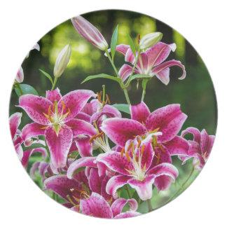 Stargazer Lilies Dinner Plate