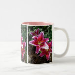 Stargazer Lilies Mugs