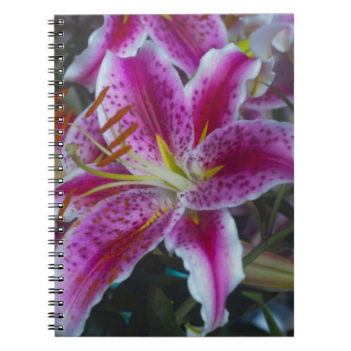 Stargazer Lilies Pink and Magenta Flowers Notebook