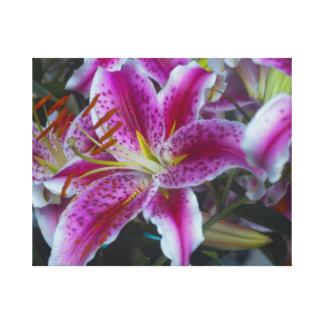Stargazer Lilies Pink & Magenta Stretched Canvas Print