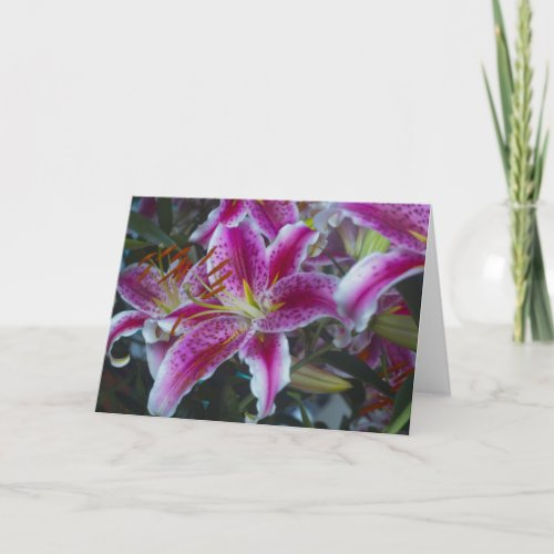 Stargazer Lilies Pink &amp&#x3B; Magenta Card