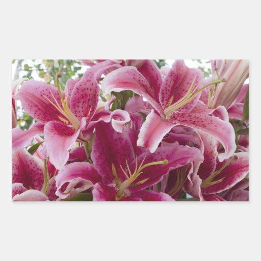 Stargazer Lilies Rectangular Stickers