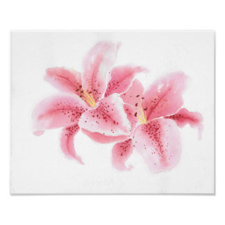 Stargazer Lilies Watercolor Poster