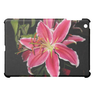 Stargazer Lilly iPad Mini Cases