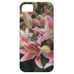 Stargazer Lilly iPhone 5 Protector