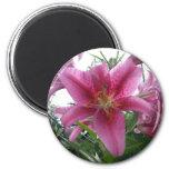 Stargazer Lily 2 Inch Round Magnet
