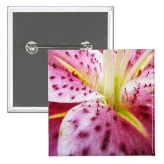Stargazer Lily Bright Magenta Floral Button