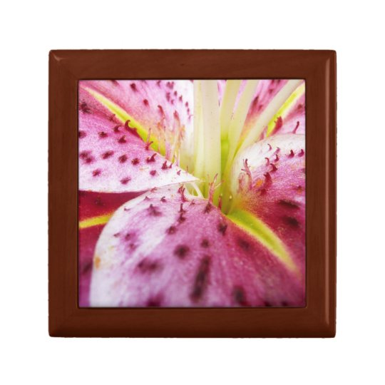 Stargazer Lily Bright Magenta Floral Gift Box