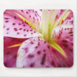 Stargazer Lily Bright Magenta Floral Mouse Pad