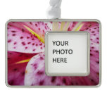 Stargazer Lily Bright Magenta Floral Silver Plated Framed Ornament