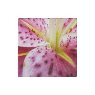 Stargazer Lily Bright Magenta Floral Stone Magnet