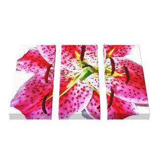 Stargazer Lily Closeup Stretched Canvas Prints
