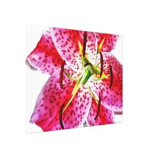 Stargazer Lily Closeup Gallery Wrap Canvas