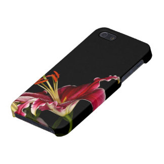 Stargazer Lily Cover For iPhone SE/5/5s